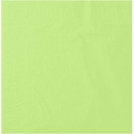 Serviette papier 2 plis 20 x 20 cm pistache photo du produit