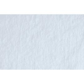 Essuyage non-tissé Ecotex blanc 55g/m² 38 x 30 cm photo du produit