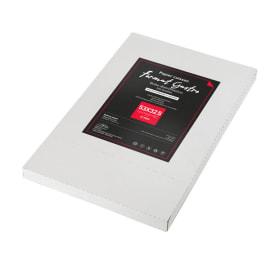 Papier cuisson silicone double face format Gastro 32,5 x 53 cm blanc photo du produit
