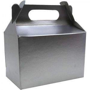 Metallic Silver Party Box (10)