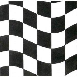 Racing Checks Lunch Napkins (12)