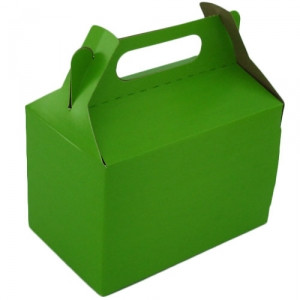 Lime Green Party Box Large (10)