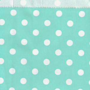 Mint Green Dotted Candy Bags (25)