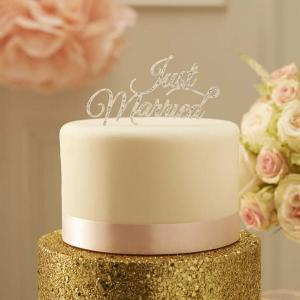 Pastel Perfection Just Married Cake Topper Silver