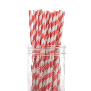 Coral Pink Party Straws (25)