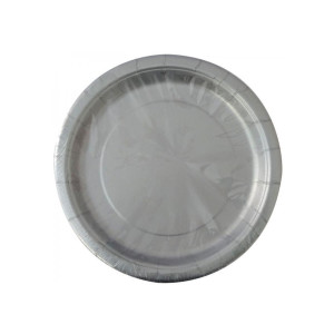 Silver Paper Plates Small (8)