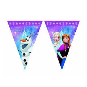 Frozen Northern Lights Bunting