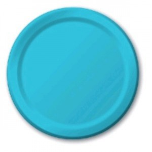 Light Blue Paper Plates (10)