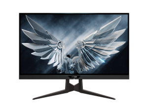 AORUS FI27Q-P RGB 27'' 1440p 165Hz HDR IPS 10-bit Colour 1ms Nvidia G-Sync RGB Gaming Monitor