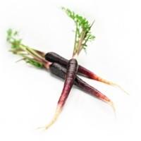 Baby Purple Carrot 475g