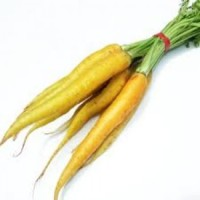 Baby Yellow Carrots 475g