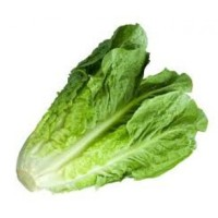 Cos Lettuce Pack 150g