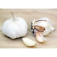 Garlic 3 pack