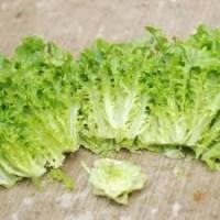 Green Frilly Lettuce 150g