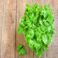 Green Frilly Lettuce Pack...