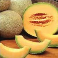 Spanspek / Melon each