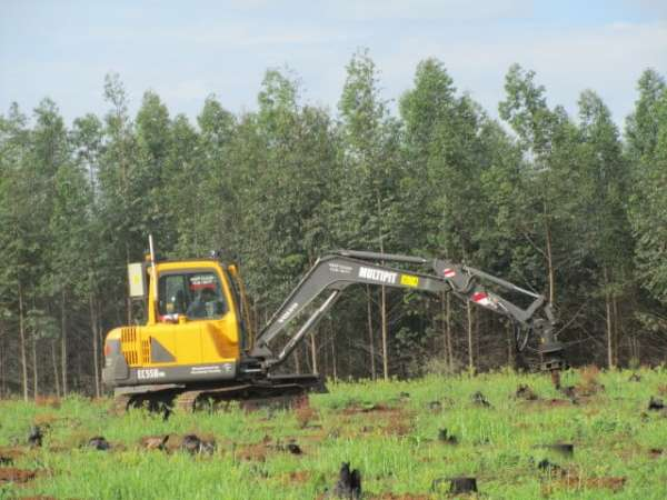 Single pitting head machine - MPAT - Novelquip Forestry