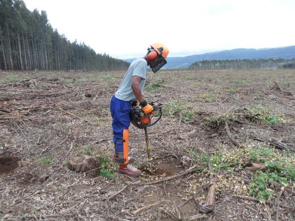 Soil preparation (pitting) using earth auger in plantation forests