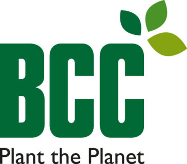 BCC Advert