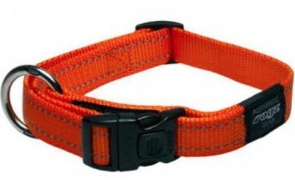 Dog Collar - XL
