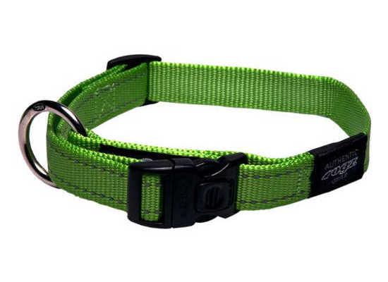 Dog Collar - Medium - Lime