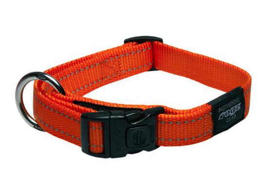 Dog Collar - Medium - Orange
