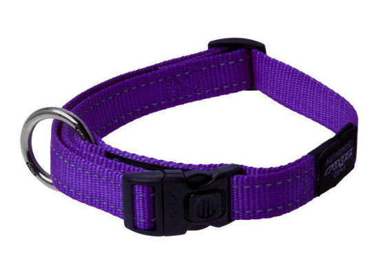 Dog Collar - Medium - Purple