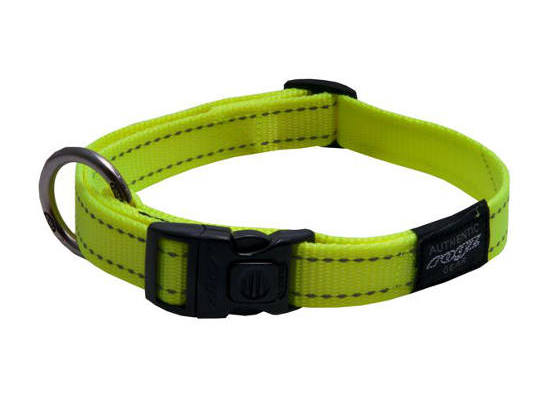 Dog Collar - Medium - Yellow