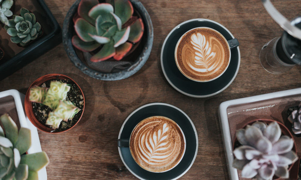 Coffee and all the other beans: Cape Town