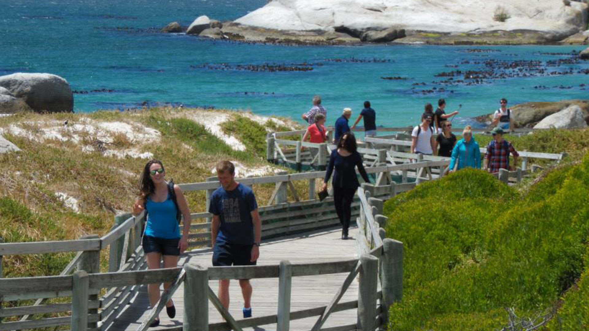 Cape Peninsula Hike & Explore