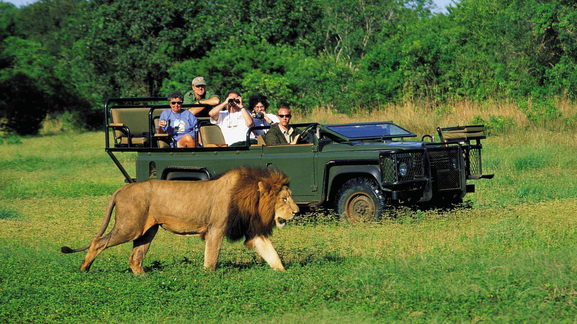 2 -5 day Garden Route Safari Adventure