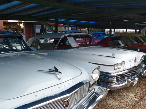 Classic Cars in the Garden Route