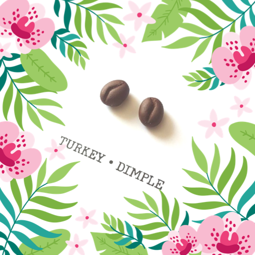 Coffee Bean Stud Earrings by Turkey•Dimple