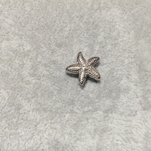 EmBrace Slide-On Charm: Silver Starfish
