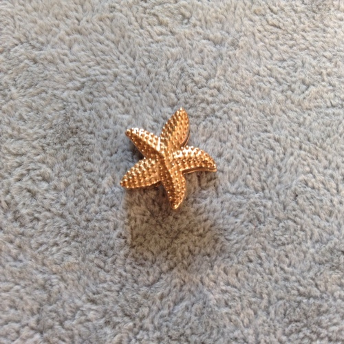 EmBrace Slide-On Charm: Rose Gold Starfish