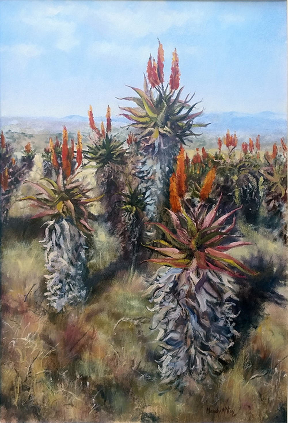 WINTER VELDT, EASTERN CAPE (SASA, highly commended certificate)