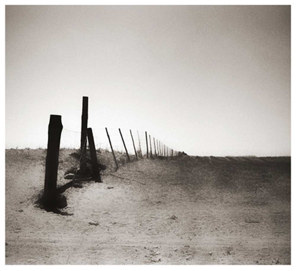 Fence series