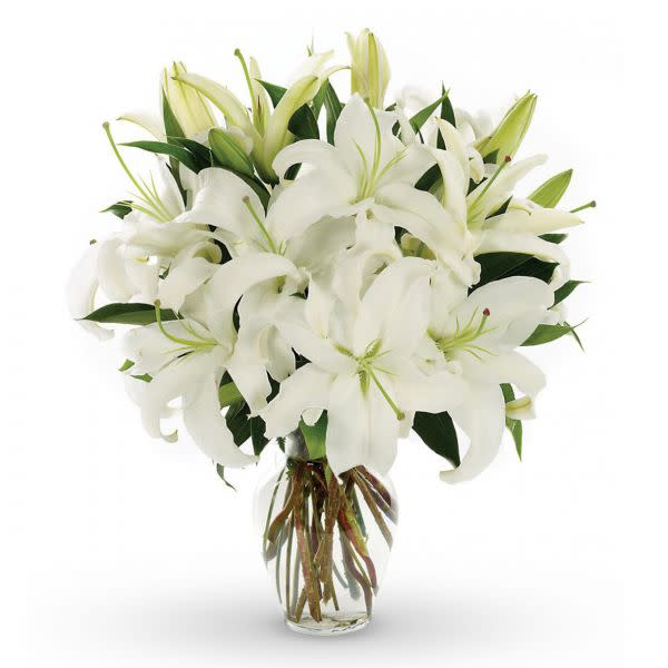 St Joseph's Lilies