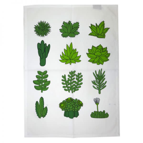 Teatowel - Succulents