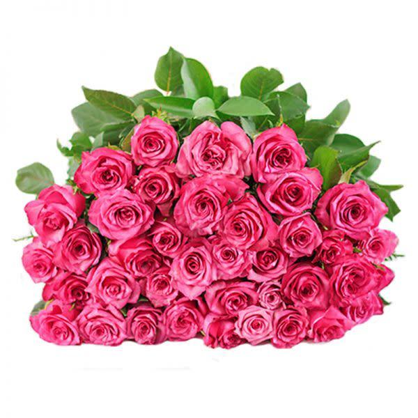 Pink Petals (40)