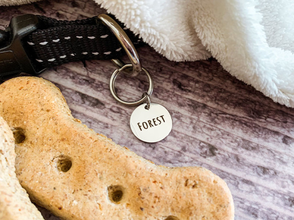 Pup/Kitty Tag - Single Round (Collar not included)