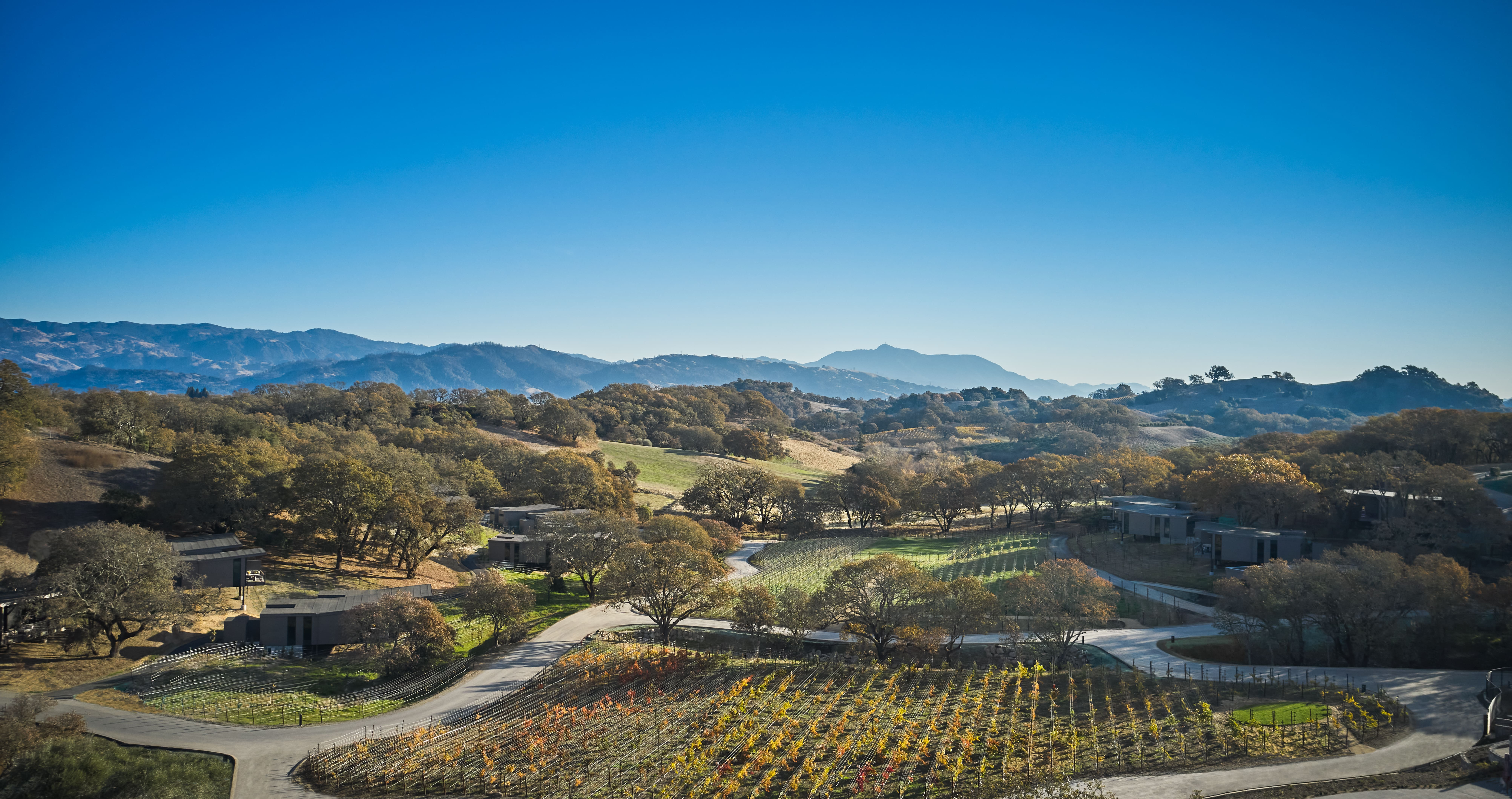 The Best New Wine Hotels Around the World