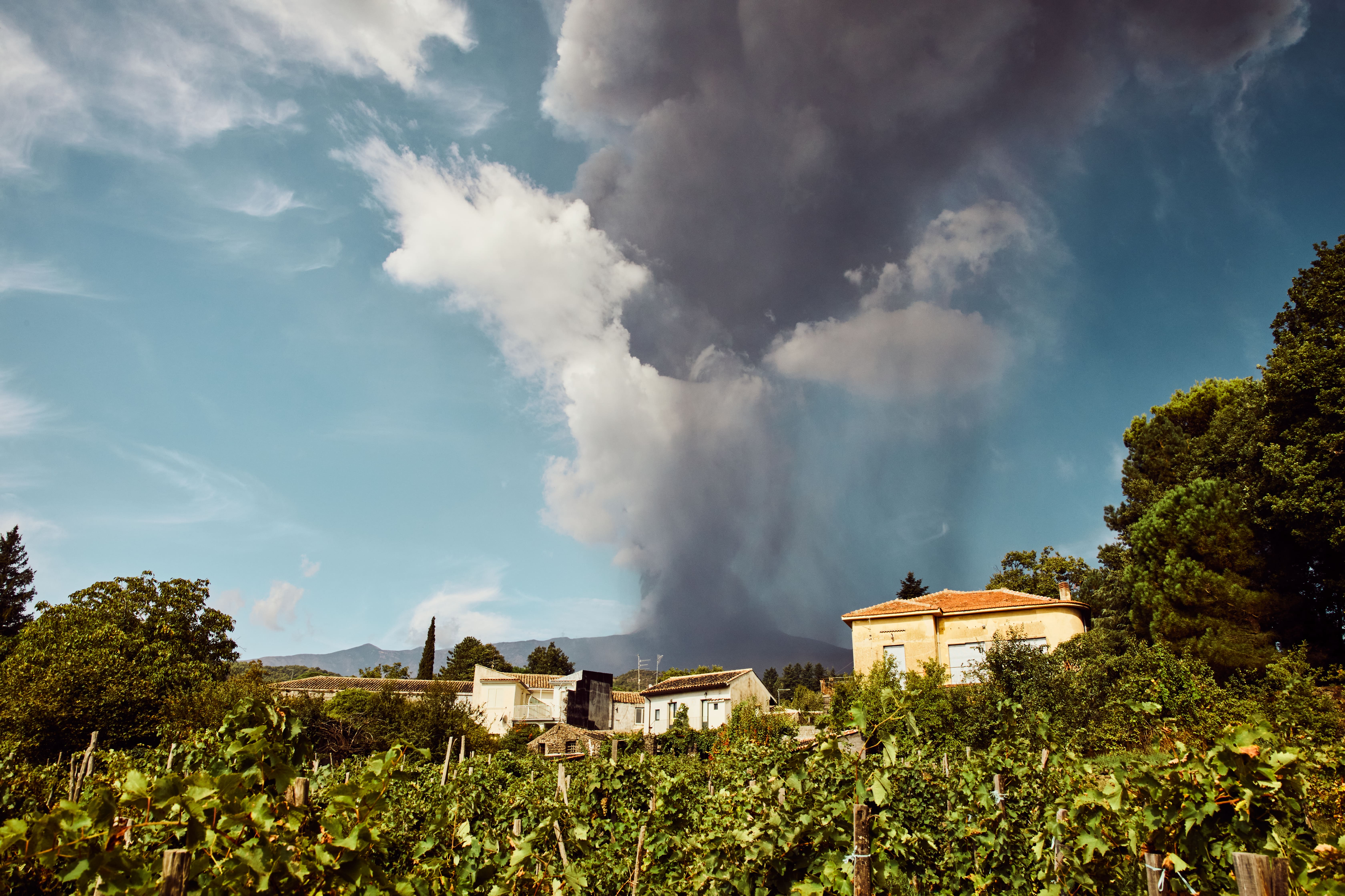 Why are Wines from Volcanic Soil So Good?