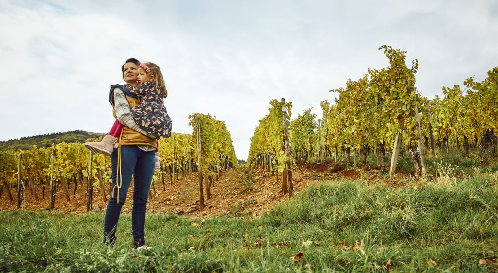 Natural wine from organic and biodynamic vineyards is better for you and better for the environment.