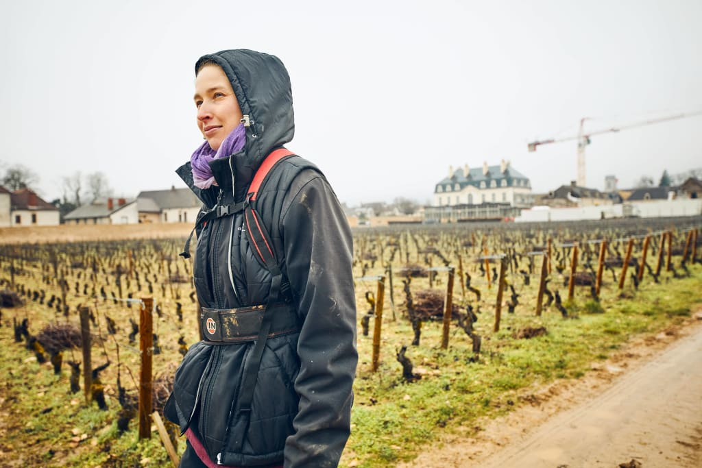 Rain in the spring and at harvest time can be detrimental to a wine's vintage.