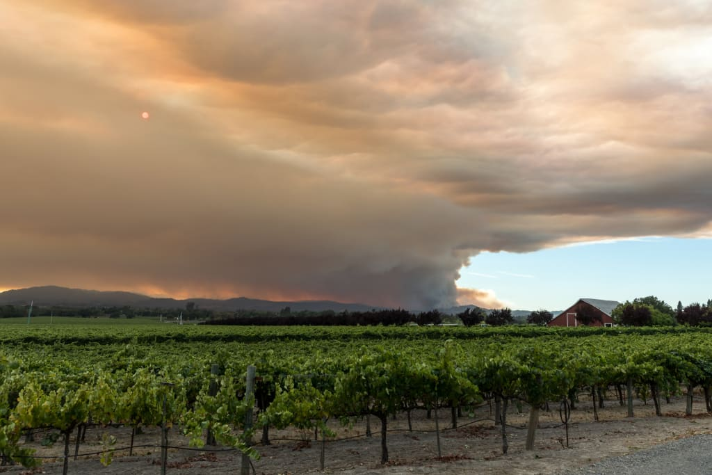wildfires in California wine country