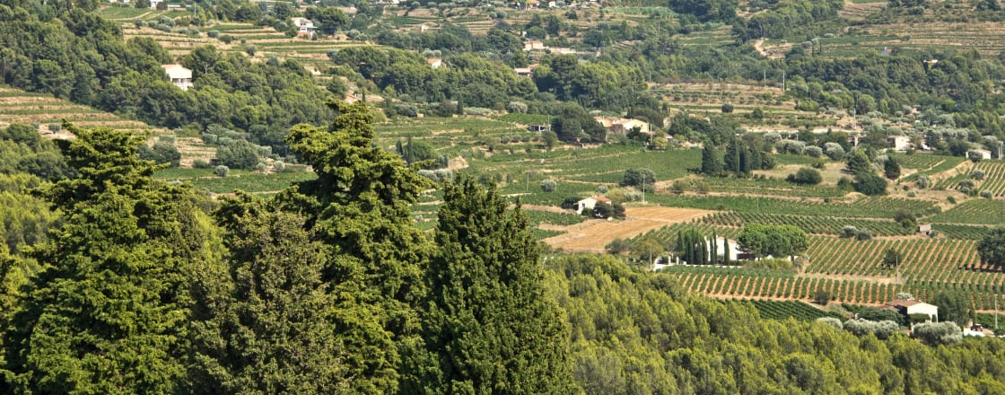 Travel Guide to Provence