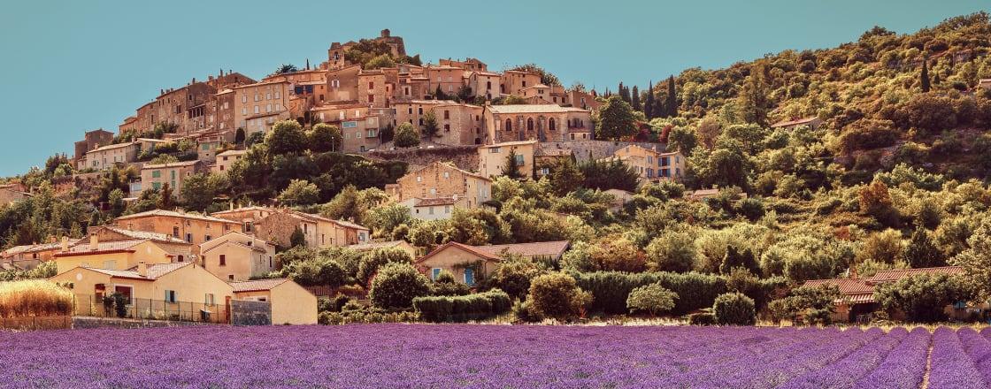 Region in Focus: Provence