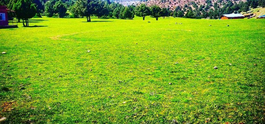 Akkışla Yaylası Piknik ve Mesire Alanı - Güneybağ, Güneysınır, Konya