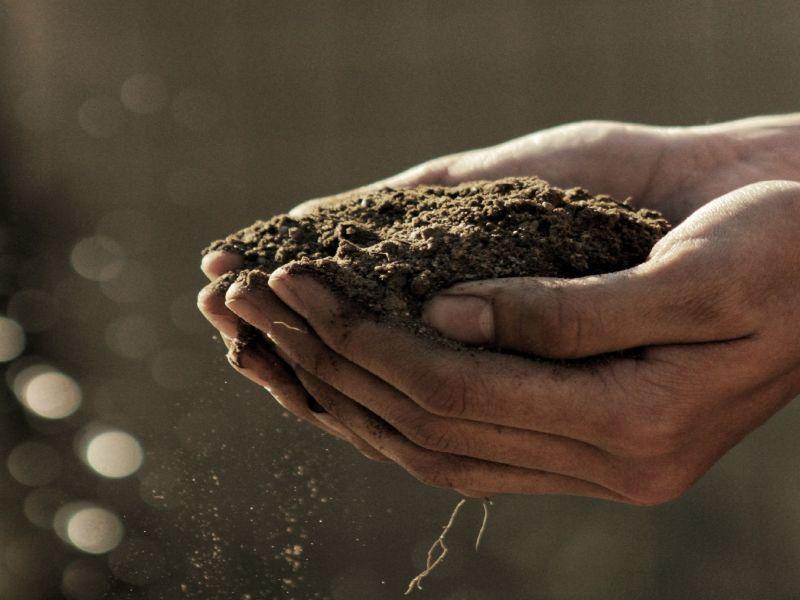 Close-up auf zwei Hände in denen Erde liegt und aus denen feine Staubkörner herausfallen.